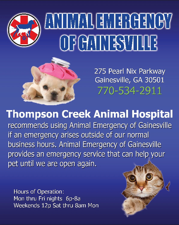 Animal Emergeny Clinic of Gainesville poster